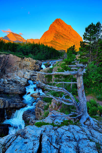 Photograph - Swiftcurrent Falls by Greg Norrell