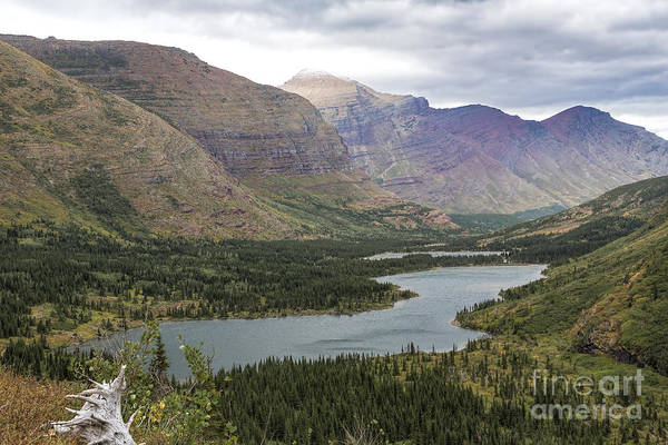 Photograph - Swiftcurrent Valley by Jemmy Archer