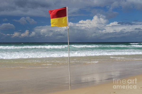 Photograph - Swim Between The Flags by Werner Padarin
