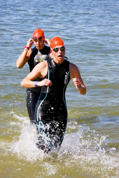 Photograph - Swimmers Exiting The Water At The Suzuki's Newton 24 Hours Of Tr by Steve Krull
