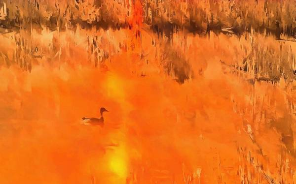 Wall Art - Painting - Swimming Duck At Sunset by Dan Sproul
