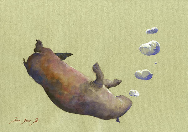 Wall Art - Painting - Swimming Hippo With Bubbles by Juan Bosco