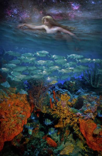 Reef Diving Digital Art - Swimming Under The Stars by Debra and Dave Vanderlaan