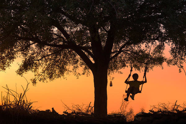 Photograph - Swing by Marji Lang