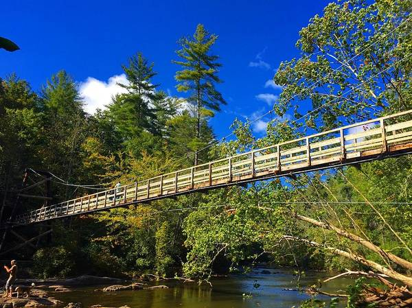 Photograph - Toccoa River Swinging Bridge by Richard Parks
