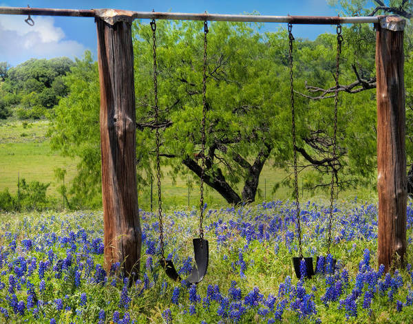 Texas Bluebonnet Photograph - Swinging Among The Bluebonnets by David and Carol Kelly