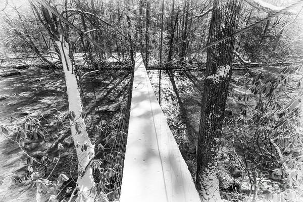 Photograph - Swinging Bridge With Snow by Thomas R Fletcher