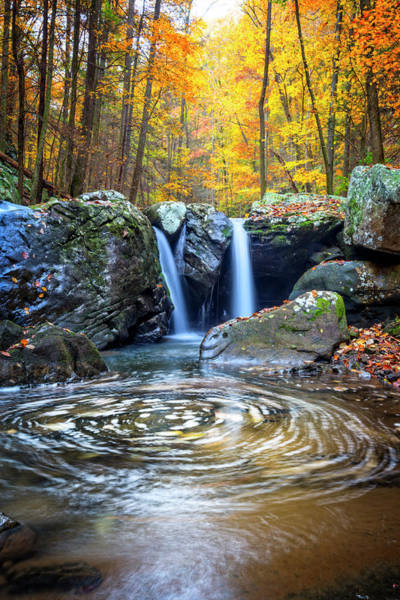 Cloudland Canyon Photograph - Swirling Pools In Autumn Colors by Debra and Dave Vanderlaan