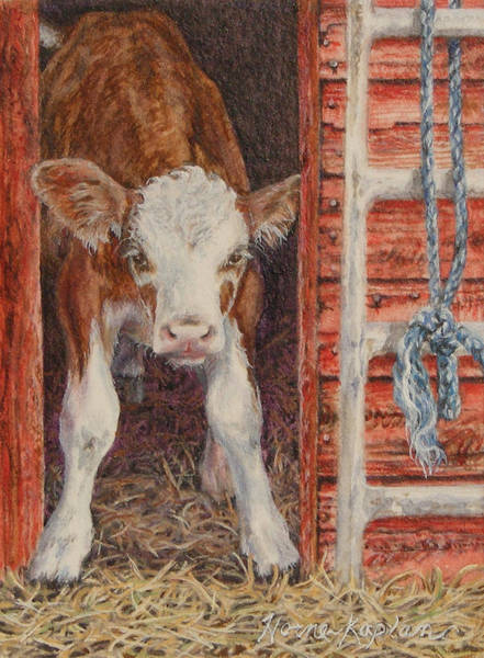 Swiss Calf, Got Milk? Art Print