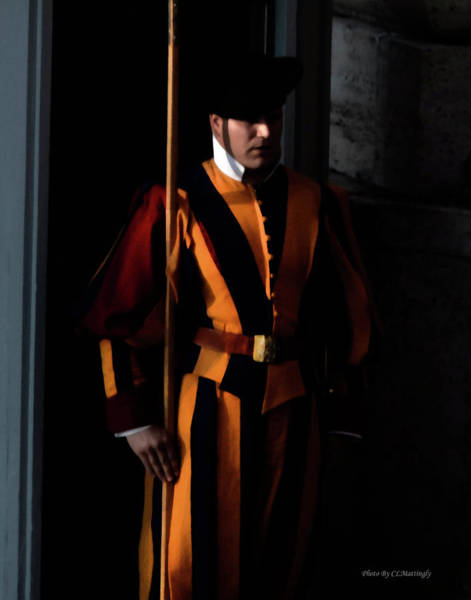 Photograph - Swiss Guard by Coleman Mattingly