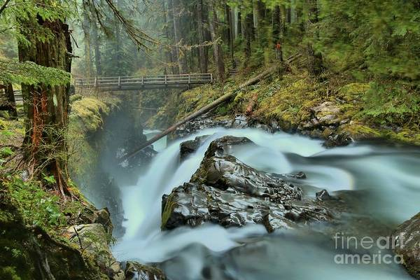 Photograph - Swollen Sol Duc Falls by Adam Jewell