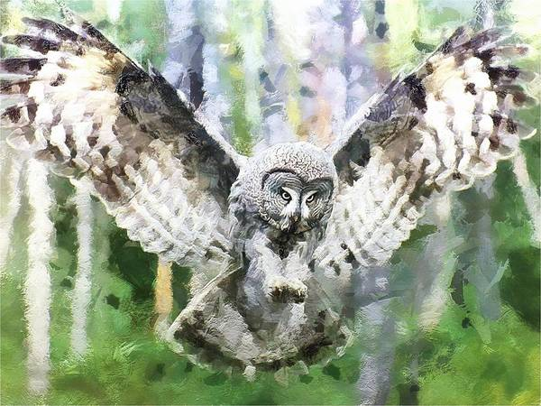 Digital Art - Swooping Owl by Charmaine Zoe