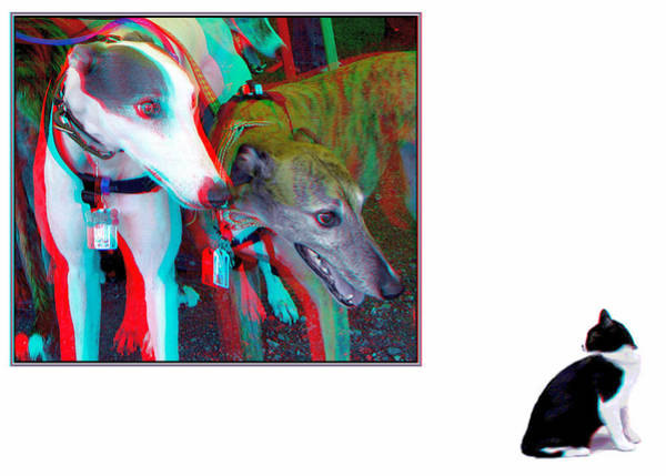 Stereoscopy Digital Art - Sworn Enemies - Red-cyan 3d Glasses Required by Brian Wallace