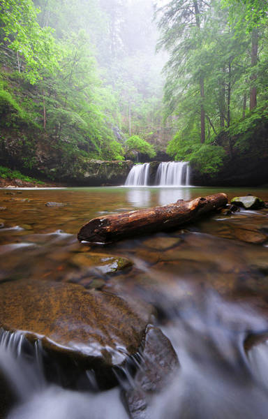 Photograph - Sycamore Falls by Dennis Sprinkle