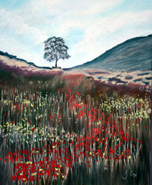 Sycamore Painting - Sycamore Gap. by John Cox