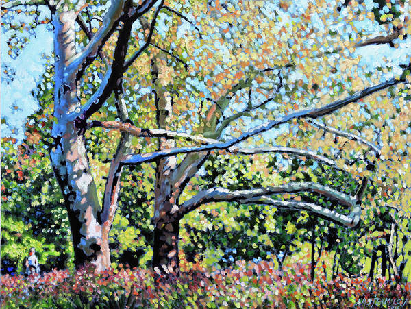 Sycamore Painting - Sycamore Trees At The Zoo by John Lautermilch