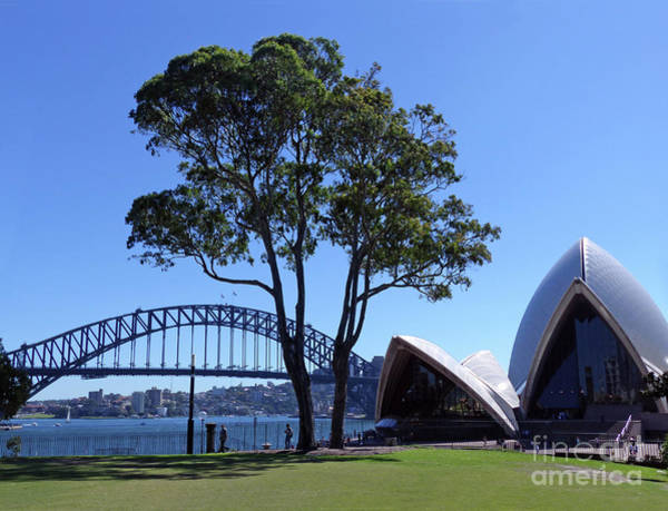 Photograph - Sydney Harbour Contrasts by Phil Banks