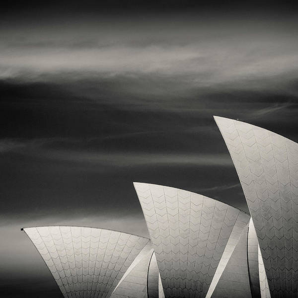 Wall Art - Photograph - Sydney Opera House by Dave Bowman
