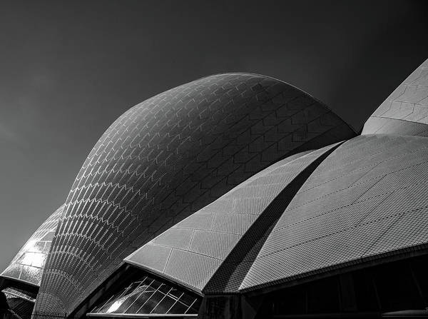 Wall Art - Photograph - Sydney Opera House by Patrick Flynn