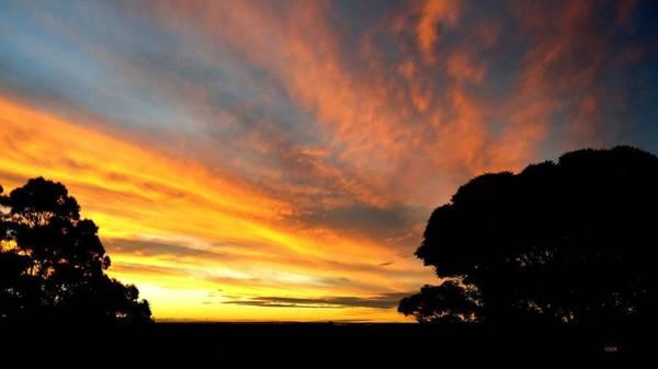 Photograph - Sydney Sunset 10-06 by VIVA Anderson
