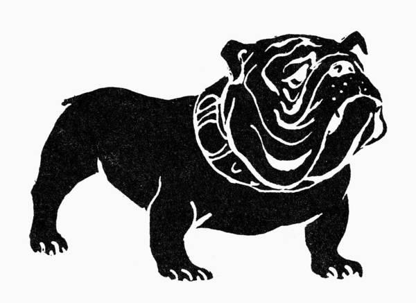 Photograph - Symbol: Bulldog by Granger