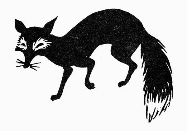 Photograph - Symbol: Fox by Granger