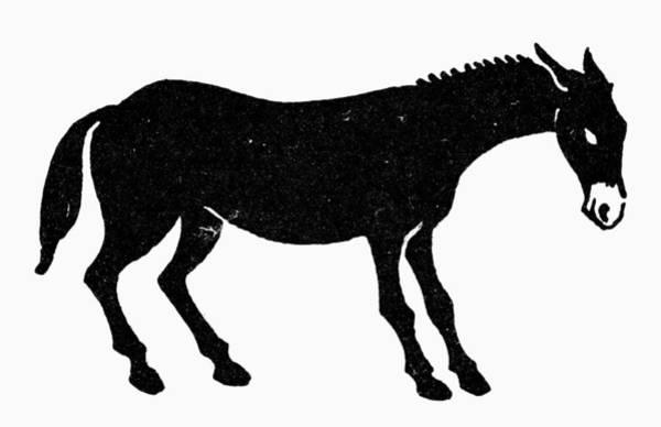 Photograph - Symbol: Mule by Granger