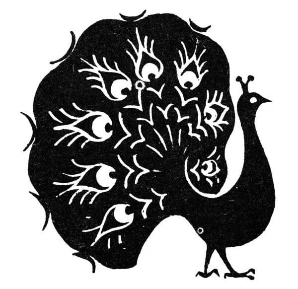 Photograph - Symbol: Peacock by Granger