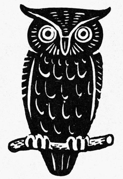 Photograph - Symbol: Wisdom by Granger