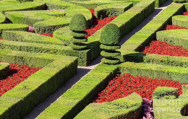 Photograph - Symmetrical Landscaped Garden by Heiko Koehrer-Wagner