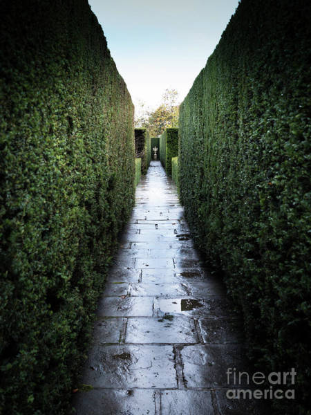 Photograph - Symmetry At Sissinghurst Castle Garden by Perry Rodriguez