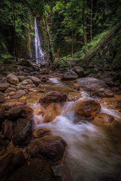 Photograph - Syndicate Falls 1 by Gary Felton