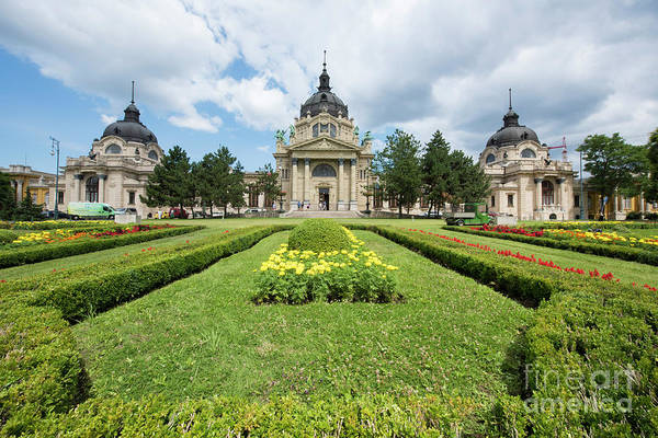 Wall Art - Photograph - Szechenyi Spa by Juli Scalzi
