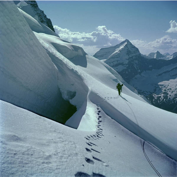 Photograph - T-202410 Fred Beckey High On Berg Glacier by Ed Cooper Photography
