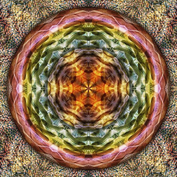 Digital Art - Never The Twine Shall Meet by Becky Titus