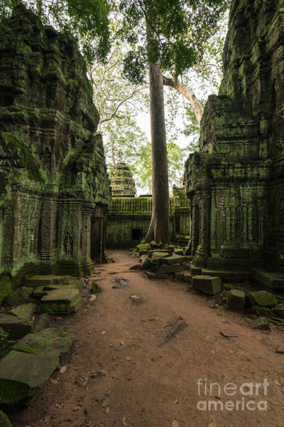 Angkor Wall Art - Photograph - Ta Phrom Temple Ruins Path by Mike Reid