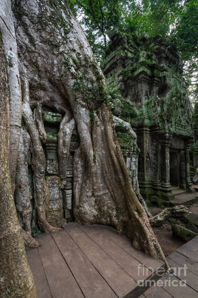 Angkor Wall Art - Photograph - Ta Prohm The Jungle Reclaims by Mike Reid