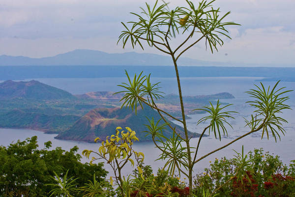 Philippines Photograph - Taal by Betsy Knapp