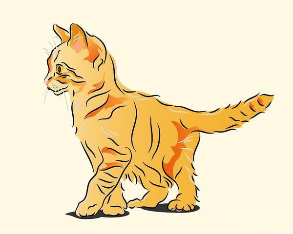 Digital Art - Tabby Kitten by MM Anderson