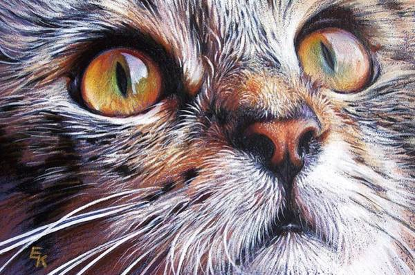 Tabby Look 2 Art Print