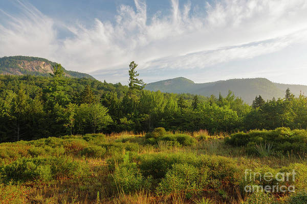 Photograph - Table Mountain - Kancamagus Scenic Byway, New Hampshire by Erin Paul Donovan
