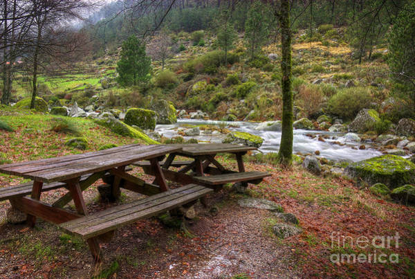 Picnic Tables Photograph - Tables By The River by Carlos Caetano