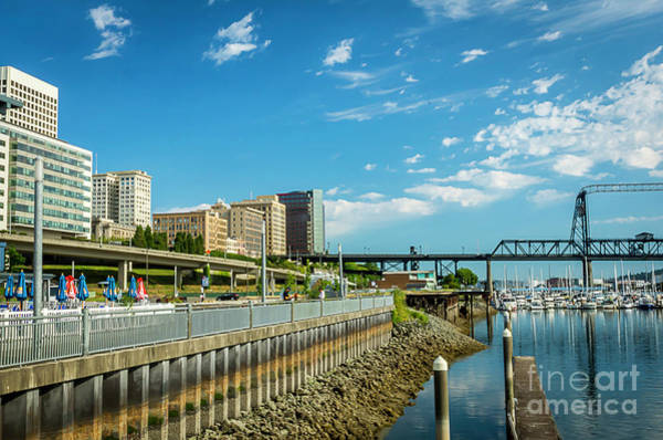 Photograph - Tacoma And 11th Street Bridge by Sal Ahmed
