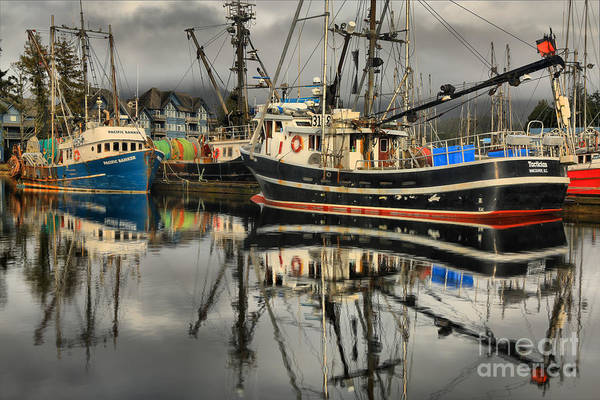 Photograph - Tactician In The Harbor by Adam Jewell