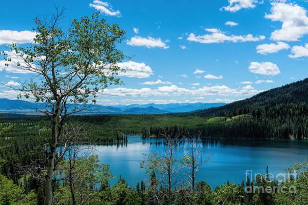 Photograph - Taggart Lake by Sharon Seaward
