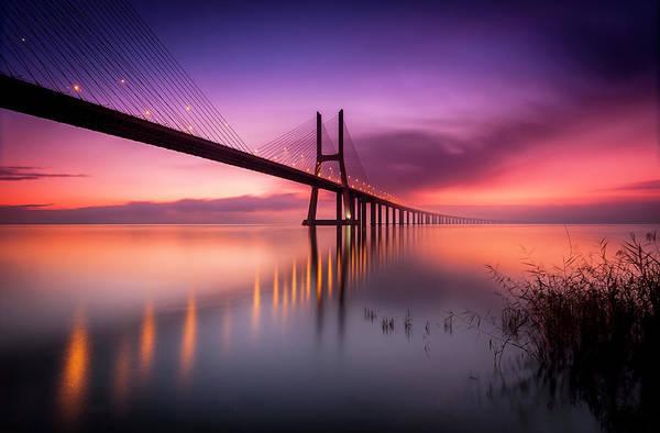 Vasco Da Gama Bridge Wall Art - Photograph - Tagus by Hugo Graca