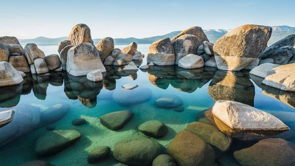 Tahoe Reflections Art Print