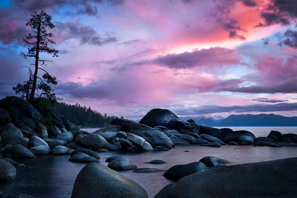 Photograph - Tahoe Serenity by Renee Sullivan