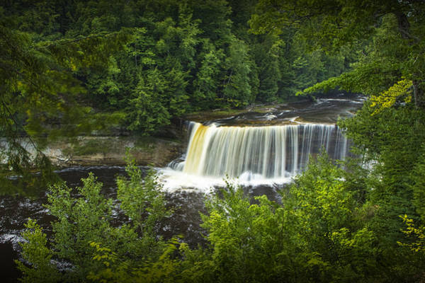 Photograph - Tahquamenon Water Falls In The Michigan Upper Peninsula by Randall Nyhof