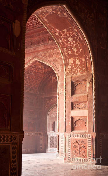 India Photograph - Taj Opening by Mike Reid